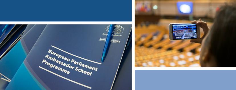 Ambassador School Programme